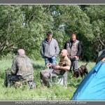 Натаска легавых собак в питомнике Белые Росы